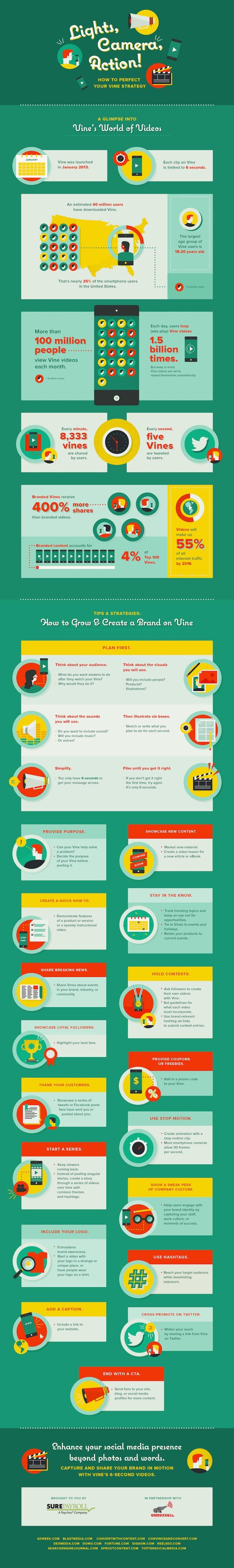 vine-strategy-infographic.jpg