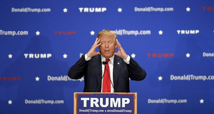 U.S. Republican presidential candidate Donald Trump addresses the crowd at a campaign rally in Farmington, New Hampshire January 25, 2016