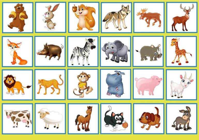 Картинки животных с названиями домашних и диких по отдельности