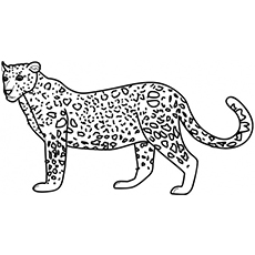 animal coloring pages printable # 2