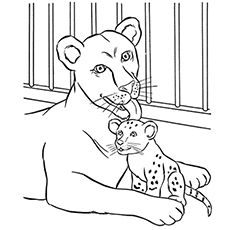 Top 25 Free Printable Zoo Coloring Pages Online | zoo animals coloring pages for kindergarten