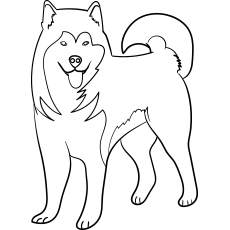 dog coloring pages printable # 3