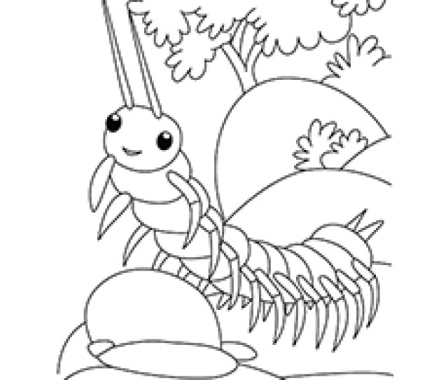 Top  Free Printable Bug Coloring Pages Online