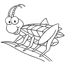 top 17 free printable bug coloring pages online