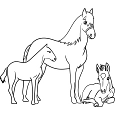 horse coloring pages # 7