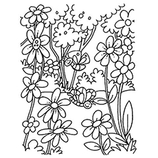 free coloring pages flowers # 1