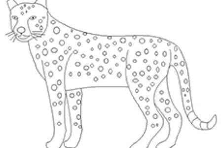 Lions Coloring Pages Free Baby Lion And Lioness Cub Page Best Images On Adult P Sheet