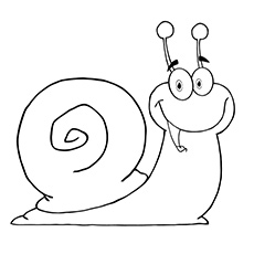 top 10 free printable snail coloring pages online