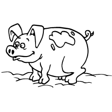 coloring pages of pigs # 3