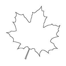 Top 20 Free Printable Leaf Coloring Pages Online