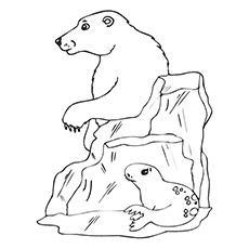 top 10 free printable seal coloring pages for toddlers