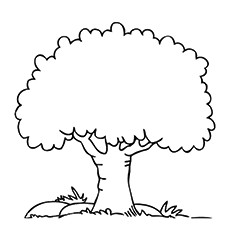 coloring pages of trees # 4