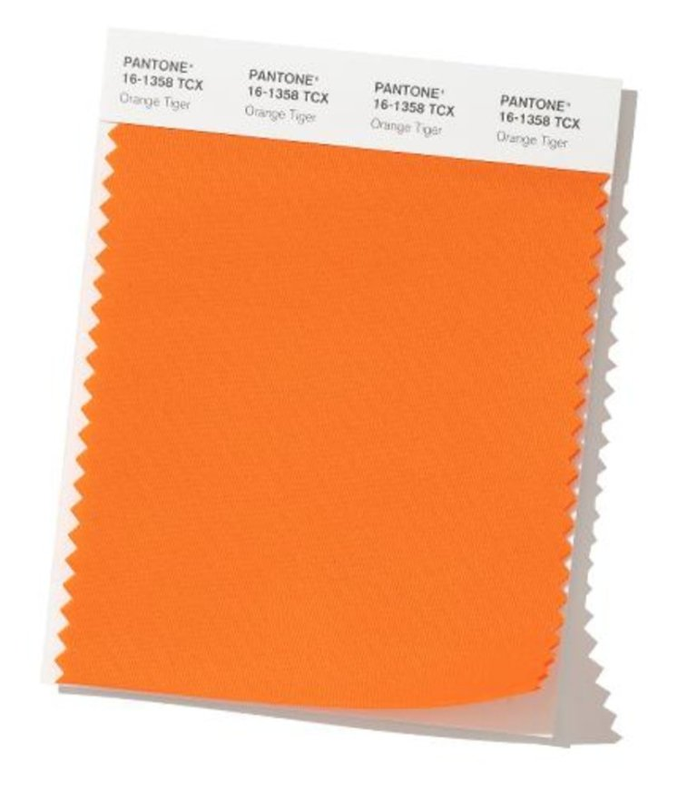 Image result for FASHION PANTONE orange tiger