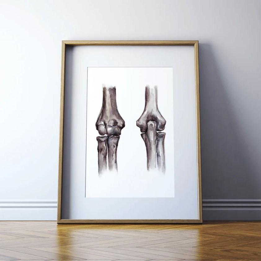 Elbow Joint Anatomy Print - Lyon Road Art