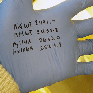 Concentrations written on glove