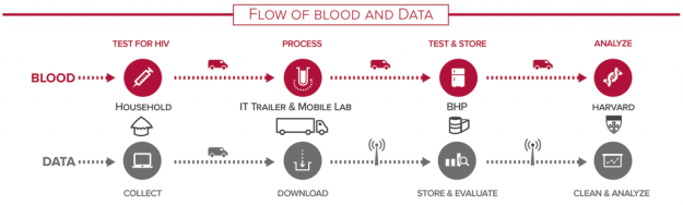 Blood & Data Flow