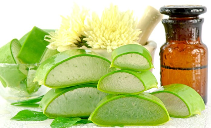 Aloe-Vera-Benefits-For-Hair