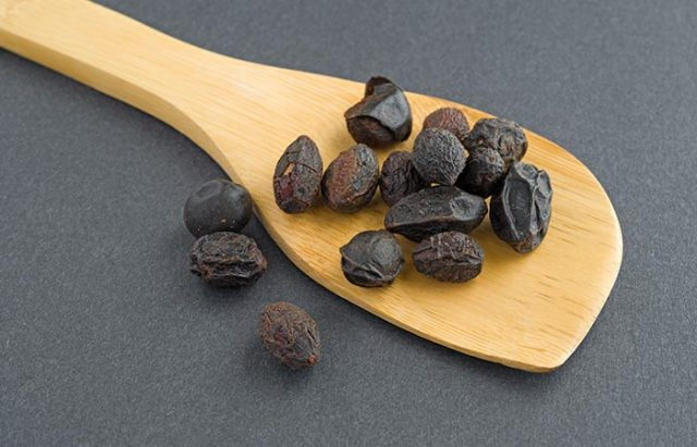 Saw Palmetto - Seeds For PCOS