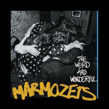 https://i2.wp.com/cdn2.thelineofbestfit.com/media/2014/Marmozets_-_The_Weird_and_Wonderful_Marmozets.jpg?resize=450%2C450