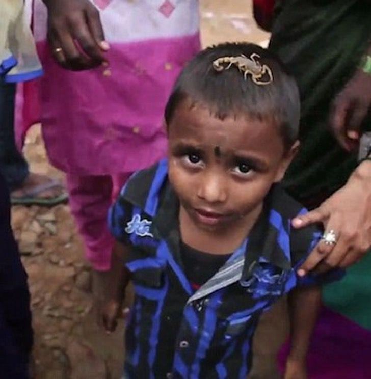 india escorpiones dios celebracion picadura peligro0006 - En la India existe un pueblo donde las personas conviven con escorpiones. Los montan en sus rostros