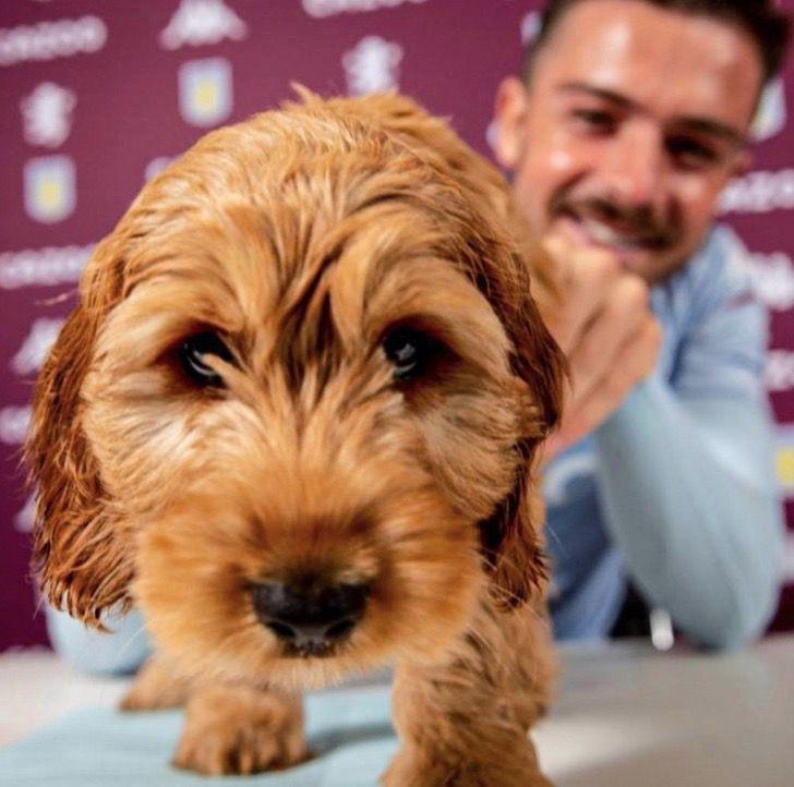 Captura de Pantalla 2021 02 04 a las 13.59.56 - Futbolista llevó a su perro para la firma de su contrato. Está con él en los momentos especiales