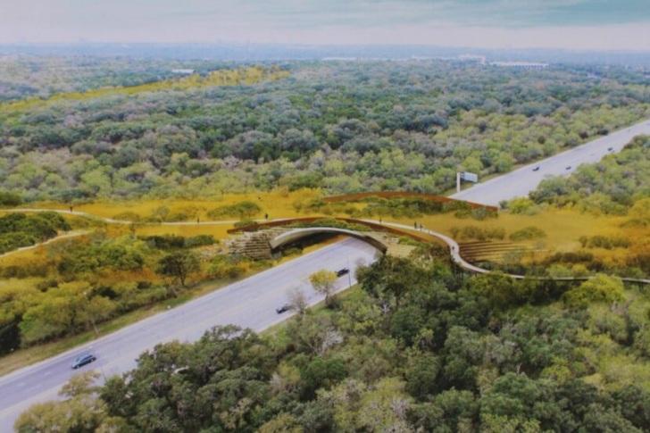 Abre el puente de vida silvestre mas grande de Estados Unidos. Intentan salvar la vida de los animal 1 1 - Abre el puente de vida silvestre más grande de Estados Unidos. Evita que animales sufran accidentes