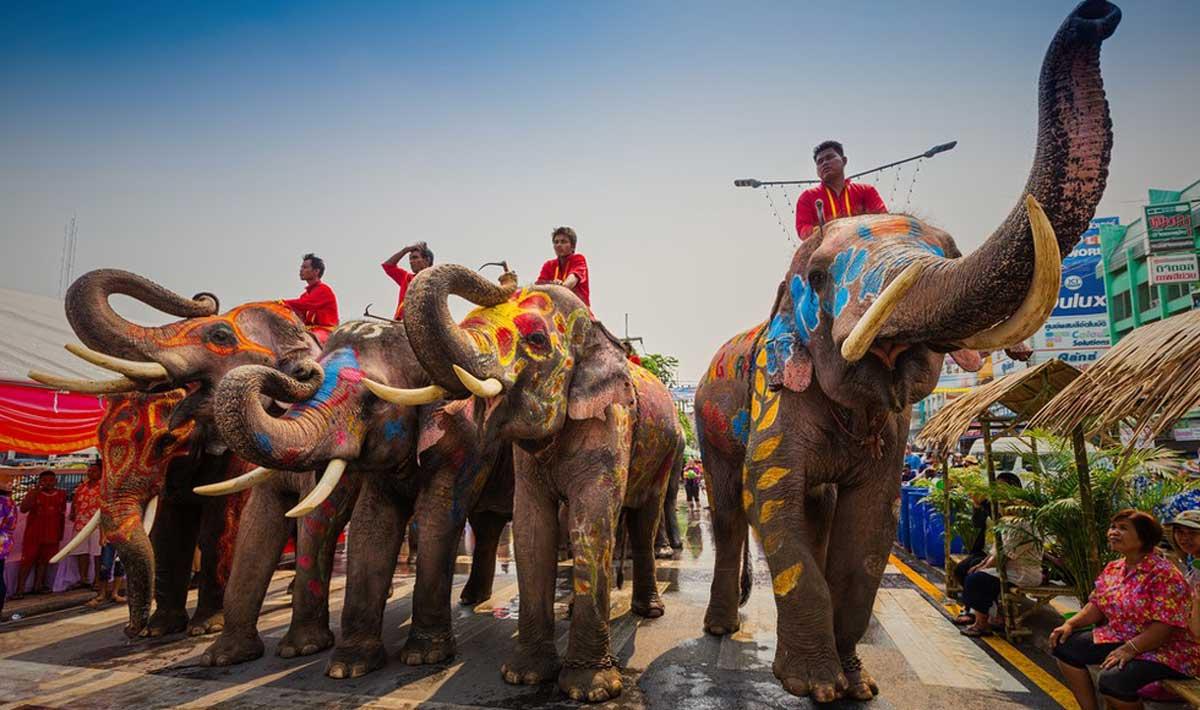 Resultado de imagen de la india elefantes