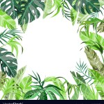 Tropical Jungle Plants Background Royalty Free Vector Image
