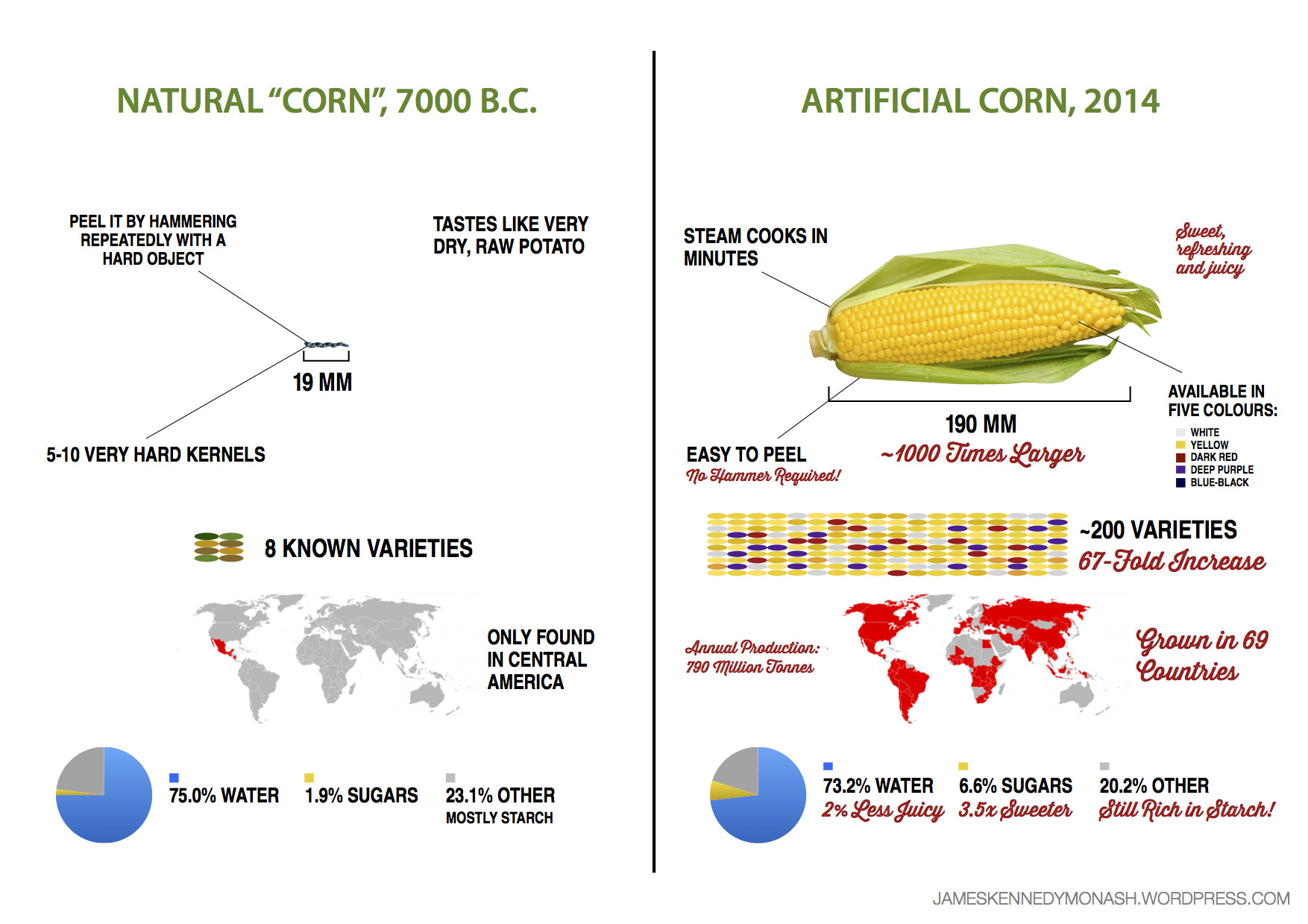 Here S What 9 000 Years Of Breeding Has Done To Corn