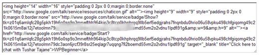 Google Badge Code