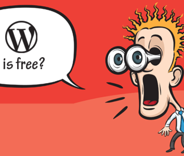 Why Dont They Sell WordPress As A Software