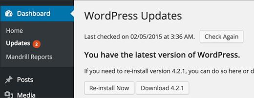 Màn hình cập nhật WordPress