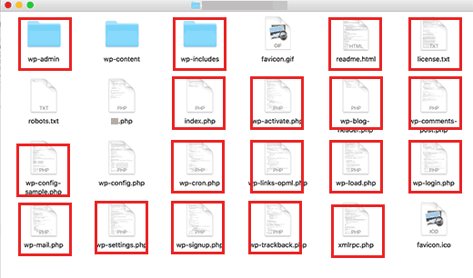 Core WordPress files and folders