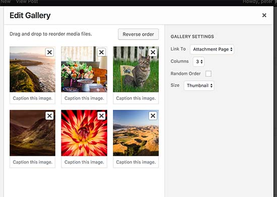 WordPress gallery settings