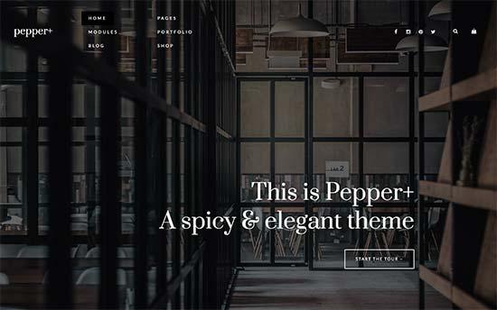 Pepper+