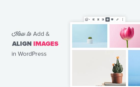 Добавление и правильное выравнивание изображений в WordPress