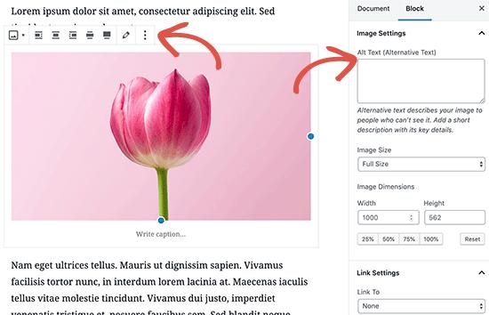 Image options in WordPress post editor