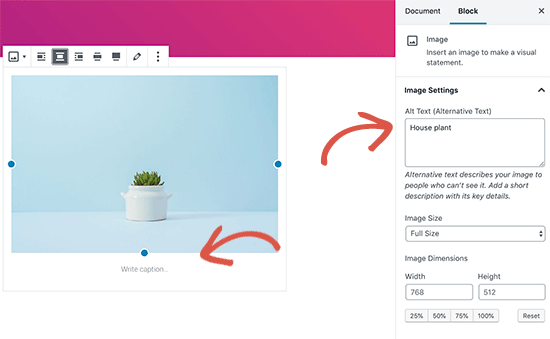 Adding alt text and caption to an image in WordPress