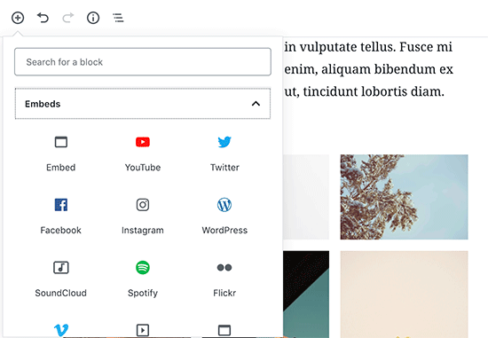 YouTube-blok toevoegen in WordPress content-editor