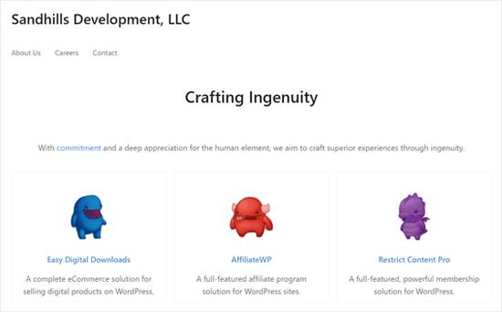 Sandills Development - успешный бизнес электронной коммерции WordPress