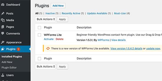 Update WordPress plugins