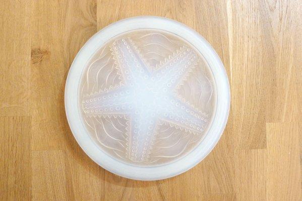 dessous de plat etoile de mer vintage en verre opalescent de rene lalique