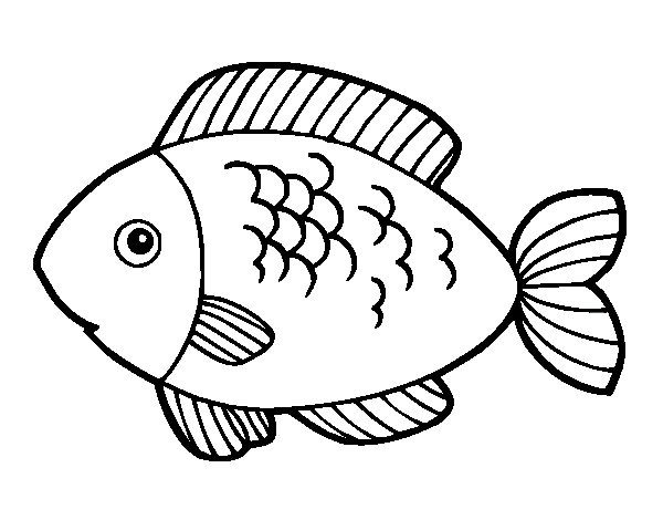 fish to eat coloring page coloringcrew com