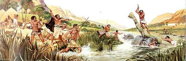 modo caza homo sapiens
