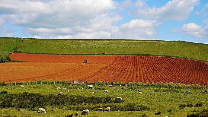 prix des terres agricoles en 2018 par