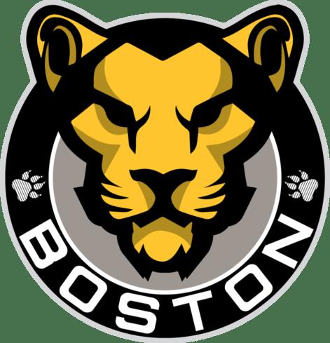 Image result for Boston Pride HOckey logo