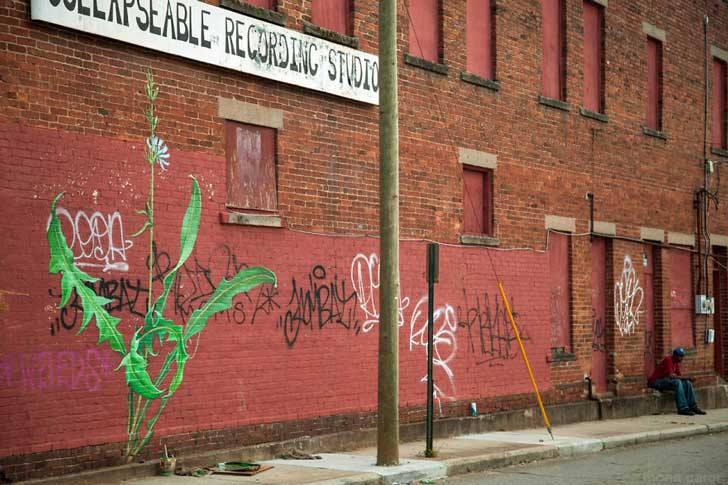 05-Mural-and-Photo-by-Mona-Caron_9255-2__880