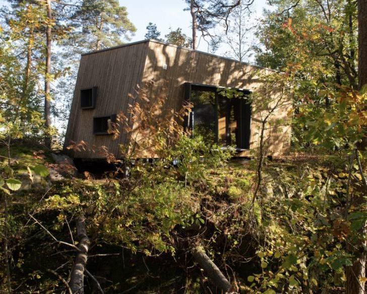 Hospitales de Noruega construyen cabañas de recuperación en el bosque 2 730x584 1 - Hospitales de Noruega instalan cabañas al aire libre para sanar pacientes con ayuda de la naturaleza