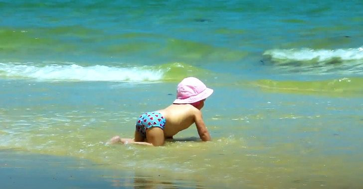 Captura de Pantalla 2020 07 03 a las 11.13.47 - Proponen usar arena verde para limpiar las playas. Capta el CO2 de conchas y esqueletos de moluscos