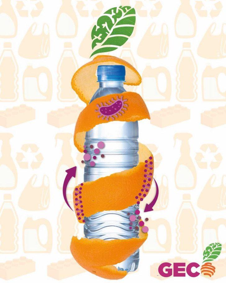 Geco ilustracion3 819x1024 1 - Estudiante mexicana revoluciona el mercado y fabrica bioplástico a partir de una cáscara de naranja